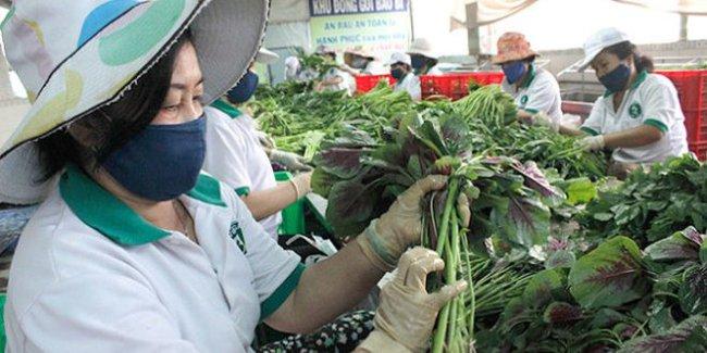 Không lo giá thực phẩm tăng vọt