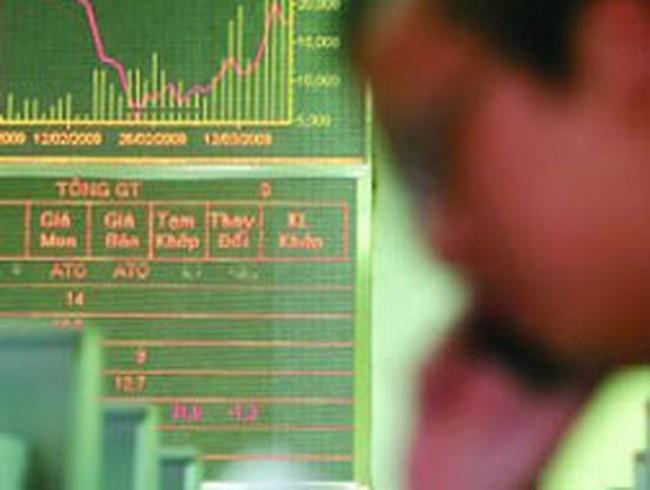 SNG, NDN: Lợi nhuận quý I/2013 giảm sút