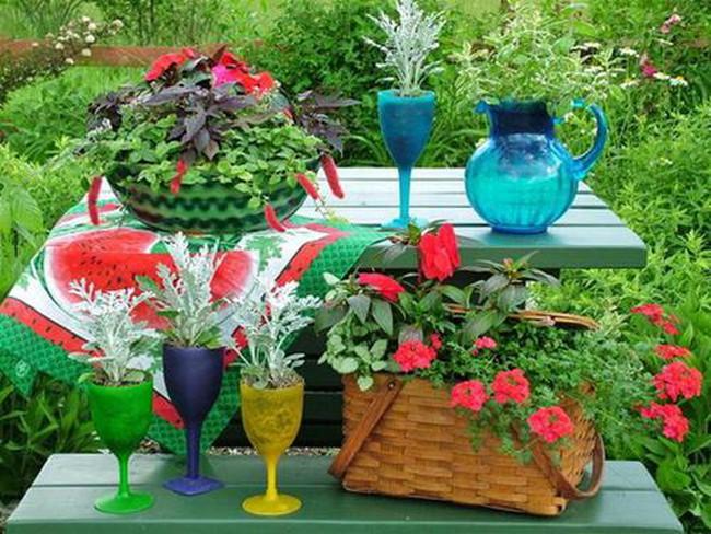 Độc đáo chậu hoa tái chế