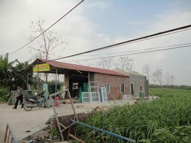 Vĩnh Phúc: Hàng nghìn mét đất nông nghiệp bị chiếm dụng trái phép