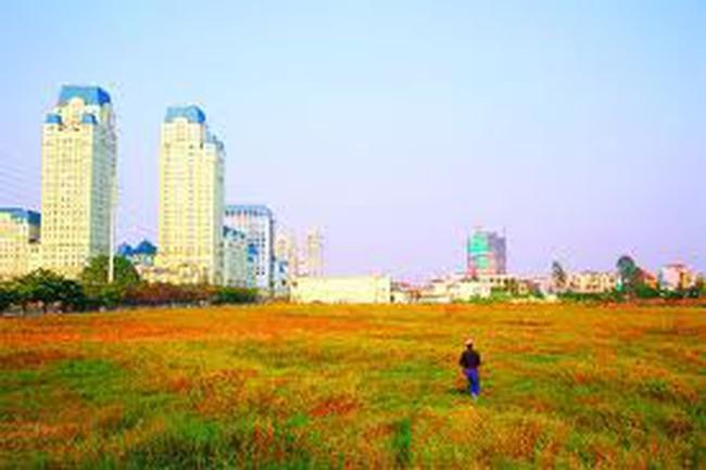 Sẽ đấu giá hơn 220ha đất năm 2013