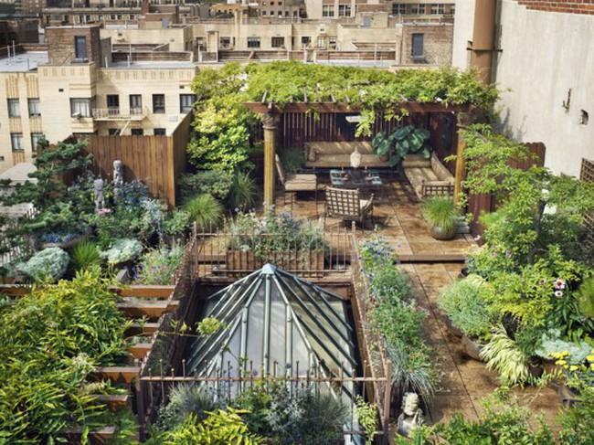Ngắm khu vườn tuyệt đẹp trên sân thượng