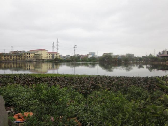 Lình xình vụ đấu thầu Cải tạo hồ Hạ Đình, Đầm Chuối