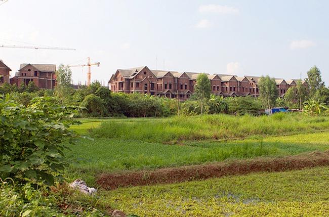 Hà Nội: Phải khẩn trương đấu giá hết các dự án quy mô từ 5.000 m2 trở lên