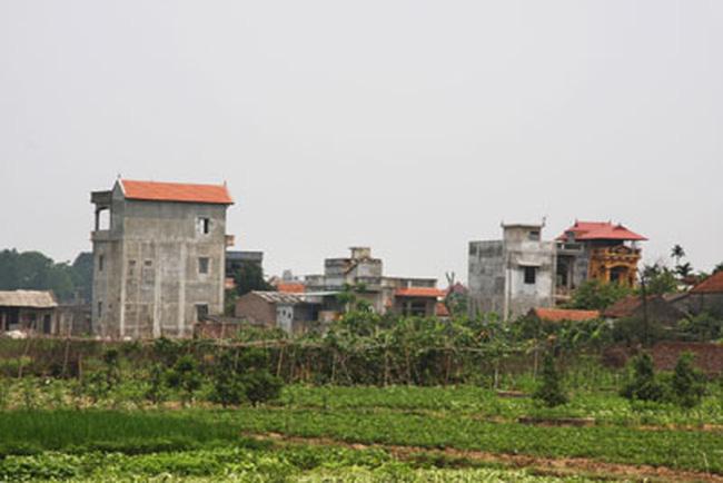 Hà Nội tăng cường quản lý đất nông nghiệp, đất công