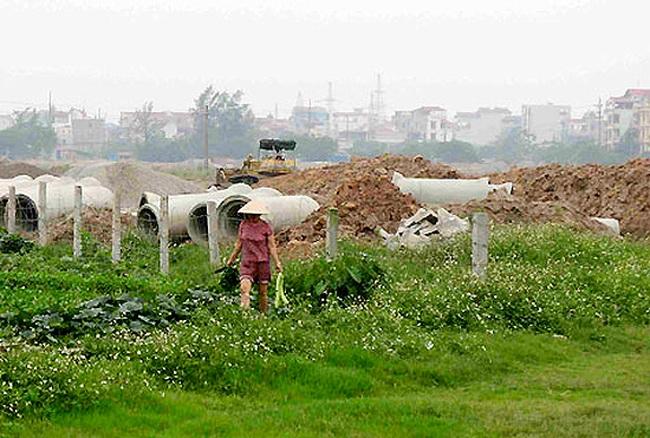 Hàng trăm ha đất lúa được chuyển thành đất dự án, công trình tại 5 tỉnh