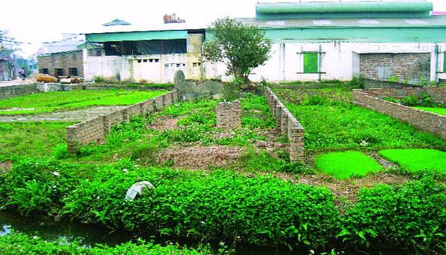 Hà Nội siết việc chuyển mục đích sử dụng đất nông nghiệp sang đất dự án