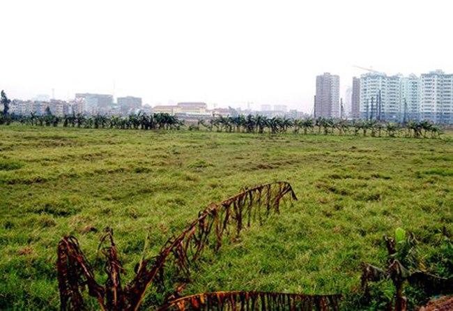 TPHCM thành lập Quỹ Phát triển đất