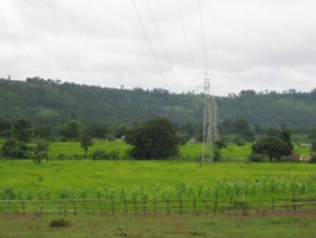 Vì sao Điện Gia Lai ''gom'' thêm cổ phần ngành mía đường?