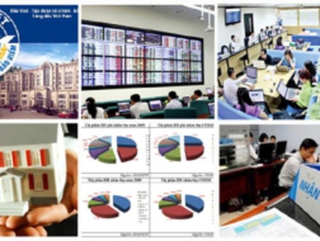 Năm 2015 hoàn thành cơ cấu lại tổ chức kinh doanh chứng khoán và DNBH