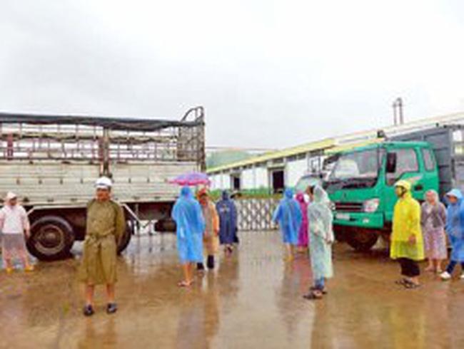 """Nhà máy cồn ethanol Đại Tân (Quảng Nam) nợ hàng trăm tỷ đồng, lãnh đạo """"mất tích"""""""
