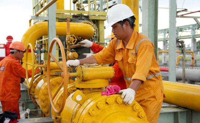 PV Gas D: Điều chỉnh giảm kế hoạch đầu tư xây dựng 2013 xuống còn 1/5 ban đầu