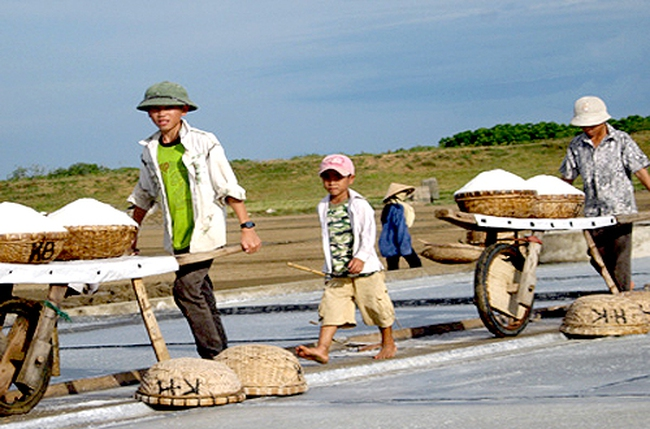 Tái cơ cấu Vinafood 1: Số phận hàng loạt công ty muối ra sao?
