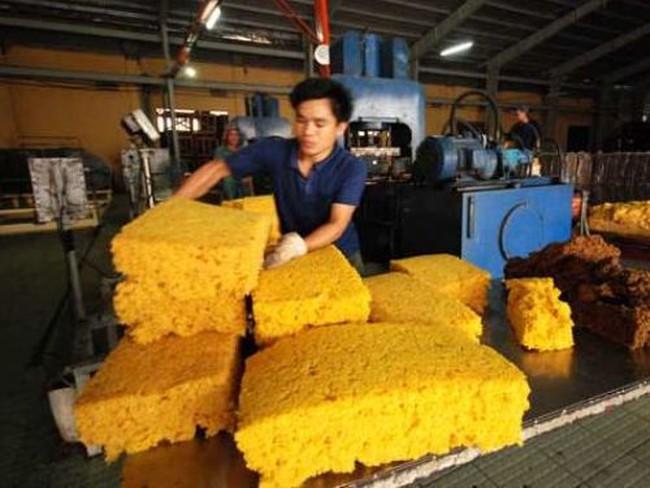 Xuất khẩu cao su: Thiếu quy chuẩn chất lượng