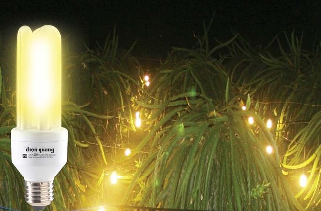 Bóng đèn Điện Quang dự kiến phát hành 4,4 triệu cổ phiếu trả cổ tức 20%