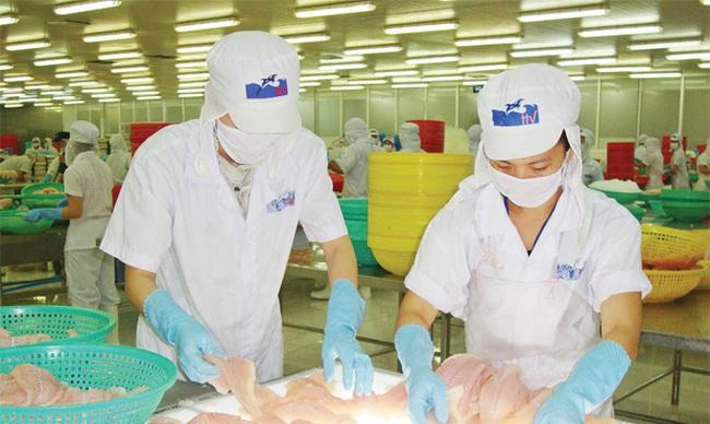 Thủy sản Hùng Vương rót 182 tỷ đồng chào mua công khai cổ phiếu VTF và AGF