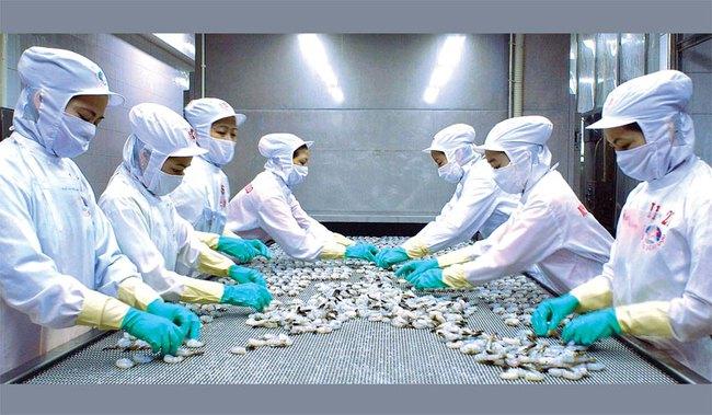 Thủy sản Minh Phú sẽ mua lại tối đa 1,6 triệu cổ phiếu quỹ