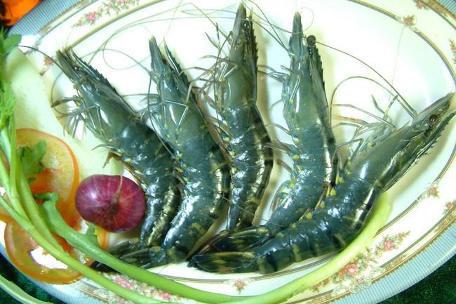 Thủy hải sản Việt Nhật sẽ ghi nhận kết quả chuyển nhượng quyền sử dụng đất vào quý 4/2013