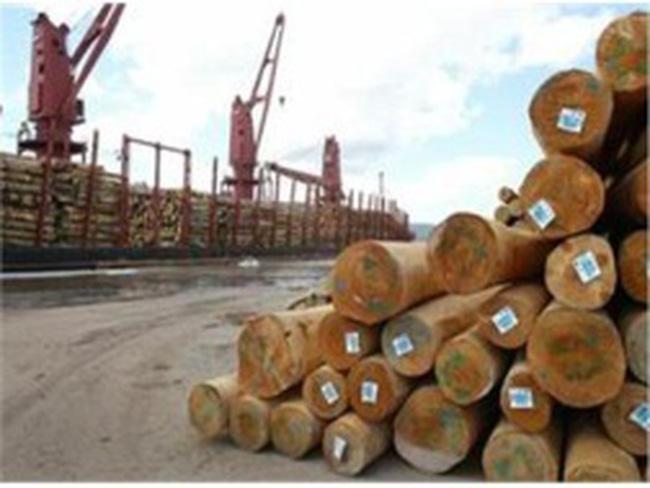 Chủ tịch Hiệp hội gỗ: Mục tiêu xuất khẩu 4,3 tỷ USD của năm nay chắc chắn sẽ đạt được