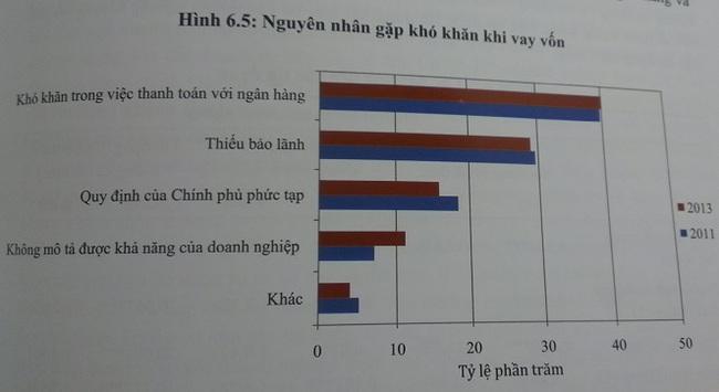 Một nửa số DN siêu nhỏ của Việt Nam không có nhu cầu vay vốn tín dụng