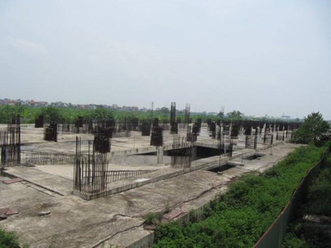 Đắng lòng nhìn cảnh hoang tàn tại dự án Tricon Towers
