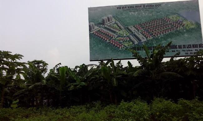 """Khẩn trương kiểm tra các dự án đô thị """"hoang"""" tại Mê Linh"""