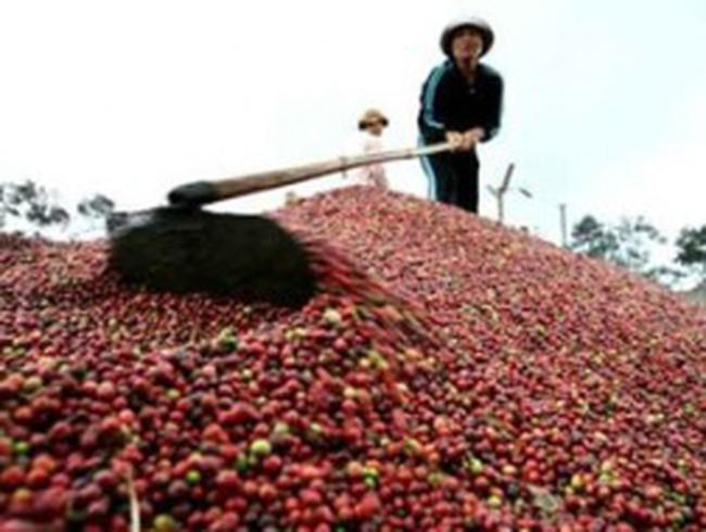 Năm 2012, sẽ đạt mục tiêu tăng trưởng xuất khẩu 13%