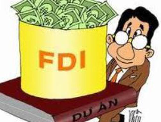 FDI: Loay hoay tìm mô hình quản lý