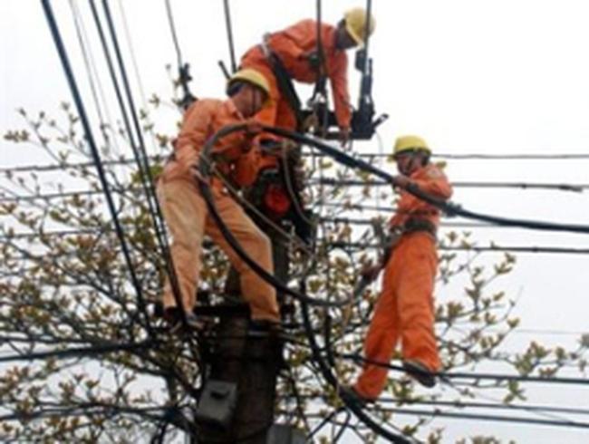 EVN NPC phát hiện, xử lý trên 2.300 vụ trộm cắp điện