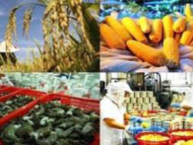 Kim ngạch xuất khẩu năm 2012 tăng 5,3% so với cùng kỳ