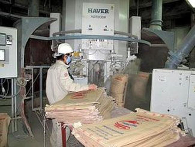 CCM -mẹ: Lãi  ròng cả năm 2012 đạt 6,08 tỷ đồng