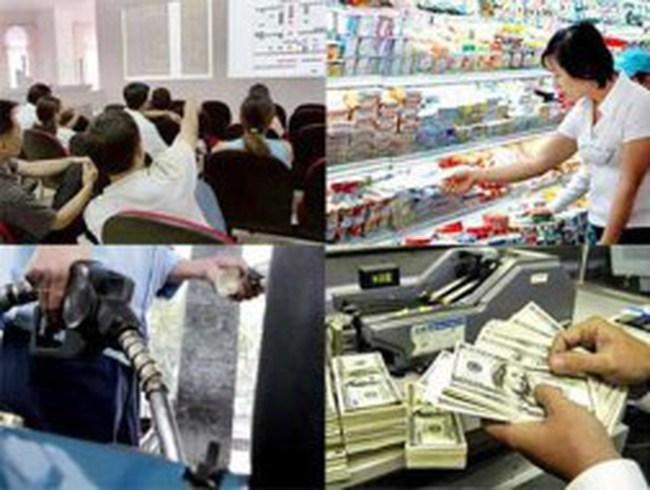 Năm 2013, kinh tế Việt Nam bình ổn