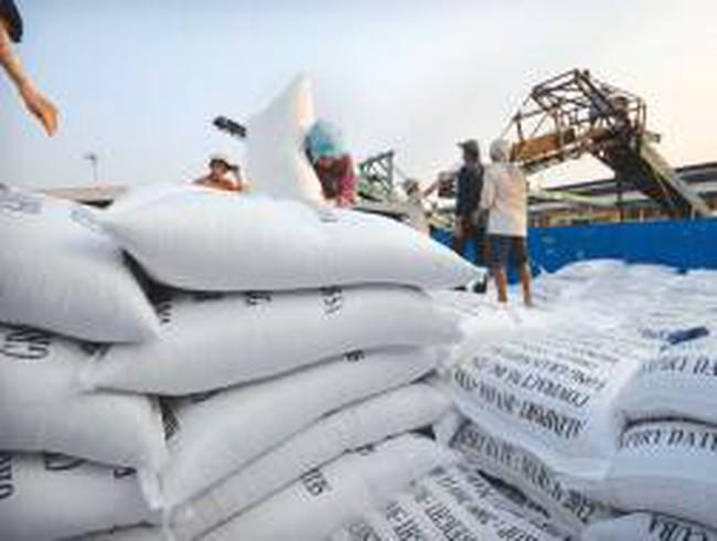 """DN nhỏ """"mượn"""" giấy phép để xuất khẩu gạo: Ai chịu thiệt?"""
