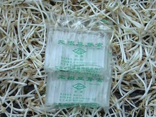 Cận cảnh hoá chất giúp giá đỗ 'mọc lên như nấm'