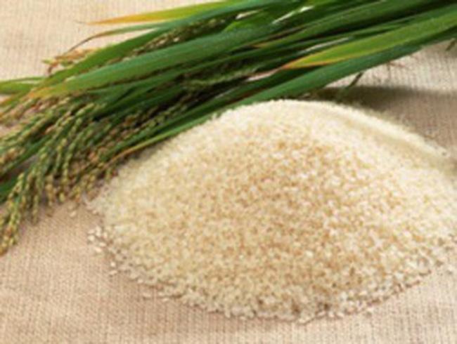 Tín hiệu vui từ gia tăng giá trị hạt gạo Việt Nam
