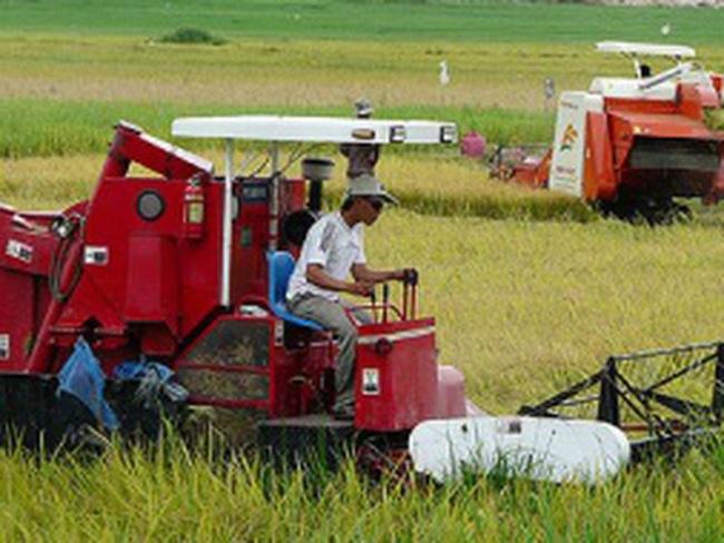 Chi phí tái cơ cấu nông nghiệp rẻ nhất so các ngành khác?