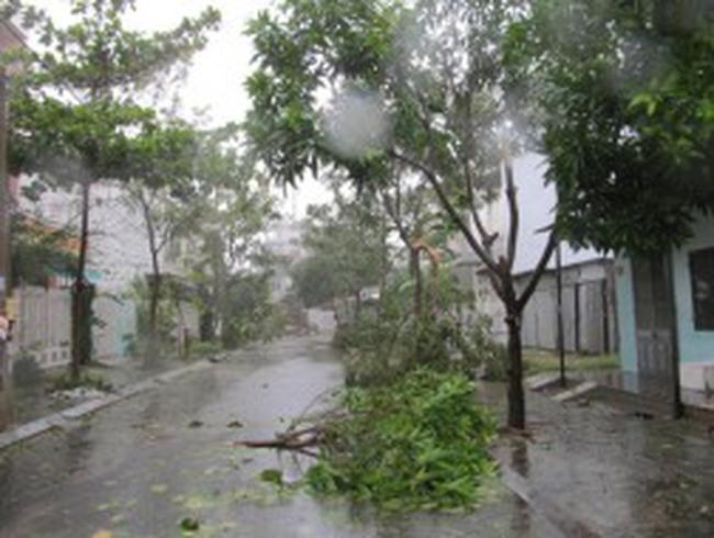 Sau Xangsane, Đà Nẵng lại tan hoang, xác xơ với bão số 11
