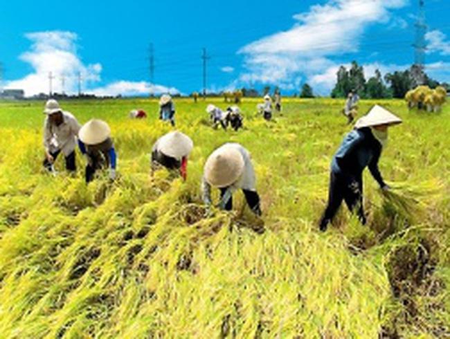 'Một cơ hội chưa từng có' cho Việt Nam
