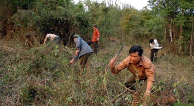 Tranh chấp đất đai giữa người dân và nông lâm trường