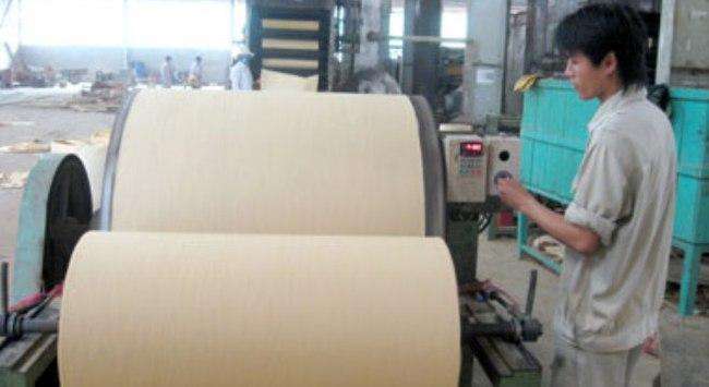 Hậu Giang khởi động lại dự án nhà máy giấy 1,2 tỉ USD