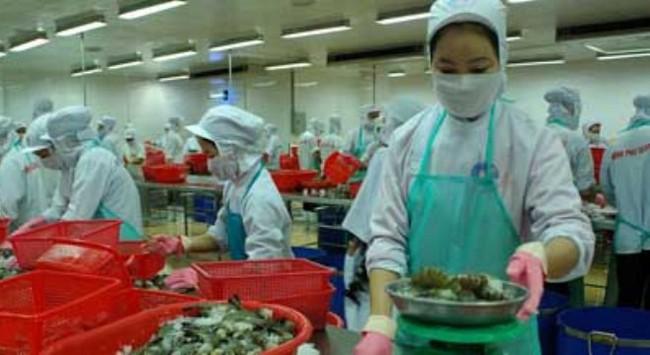 Doanh nghiệp thủy sản phải đối mặt với tình trạng thiếu nguyên liệu
