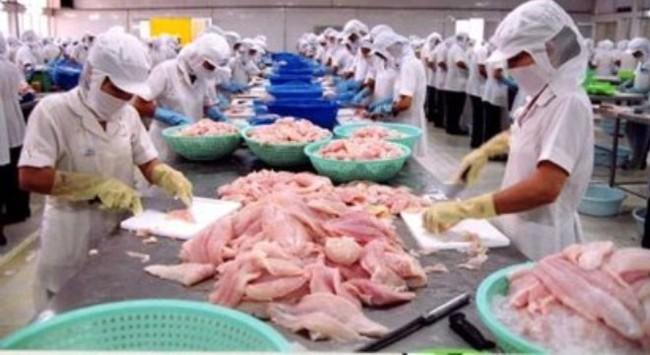 Hiệp định TPP: Doanh nghiệp thủy sản có nắm bắt được cơ hội?