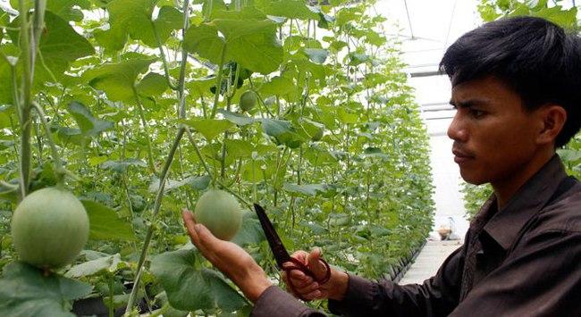 Huy động các nguồn lực vào nông nghiệp