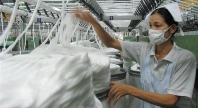 Tự do hóa thương mại: Ngại nhất chứng nhận xuất xứ