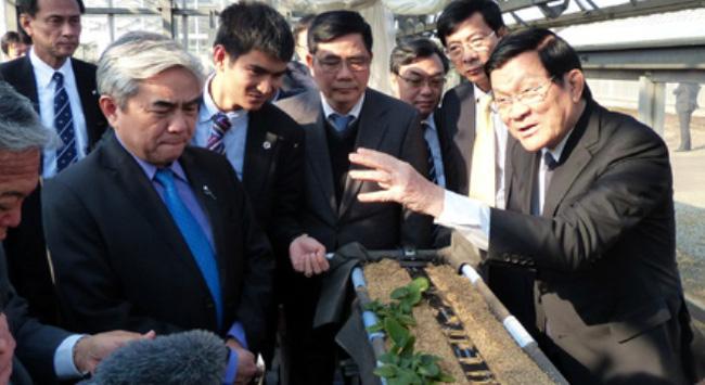 Hợp tác nông nghiệp Việt – Nhật: Tạo cú hích mới