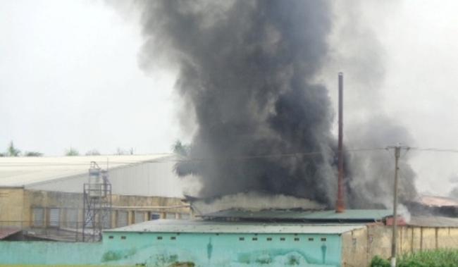 Đồng Nai: Cháy lớn tại công ty may, 1.000 công nhân náo loạn