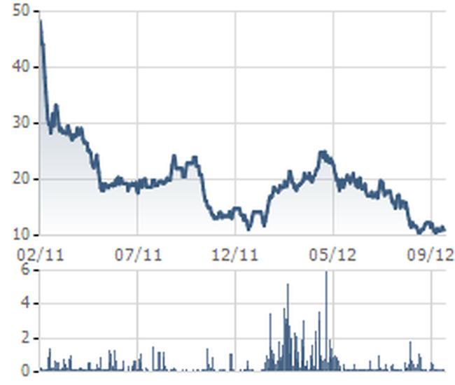 D11: DN 2 năm liên tiếp EPS trên 10.000 đồng lãi chưa đầy 500 triệu đồng 9 tháng