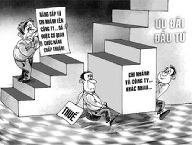 Cơ quan thuế hầu tòa