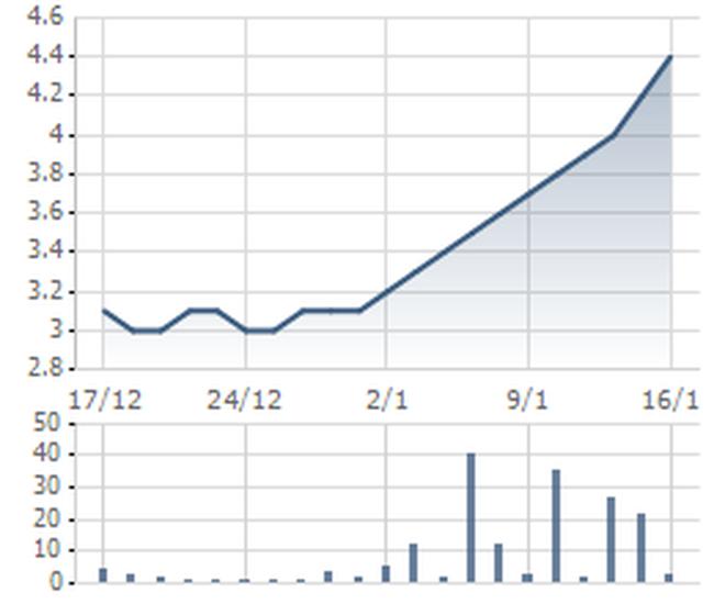 MTG: Giải trình về việc tăng giá cổ phiếu 10 phiên liên tiếp