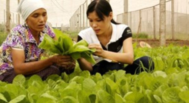 Canada đầu tư hơn 7,6 triệu USD cho nông nghiệp VN